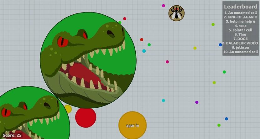 agar croc